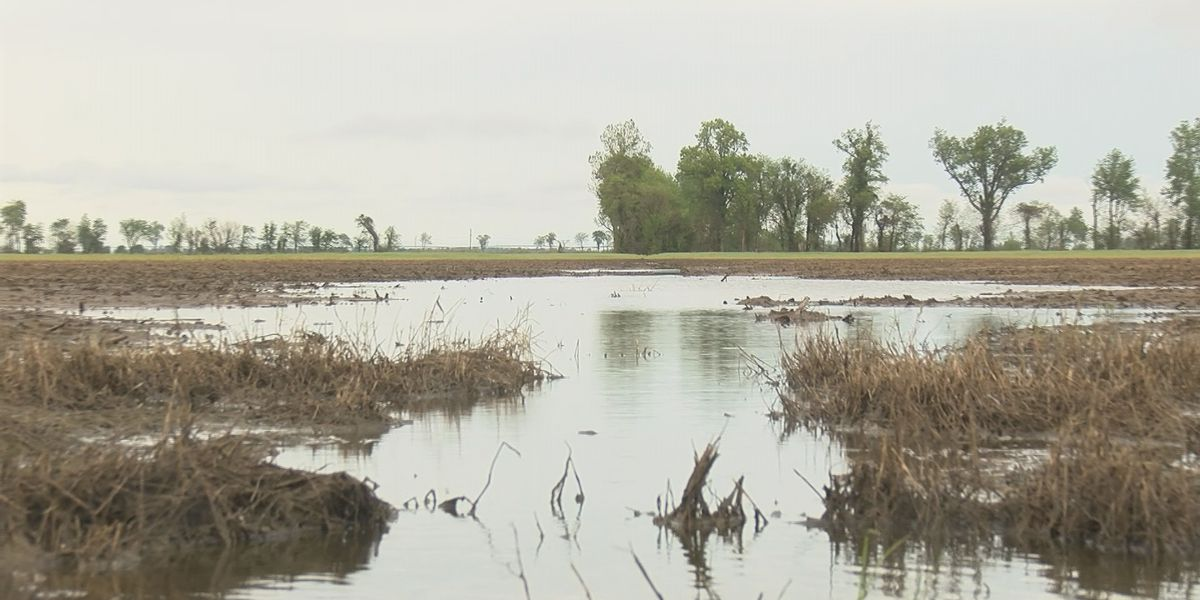 Heartland farmers behind schedule, anxious about wet weather