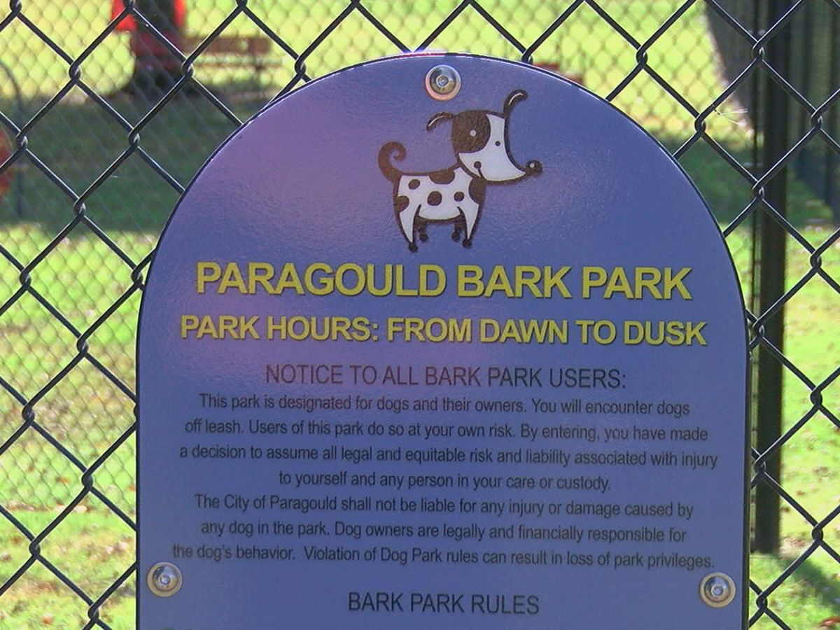 Go up, down, or around at Bark Park