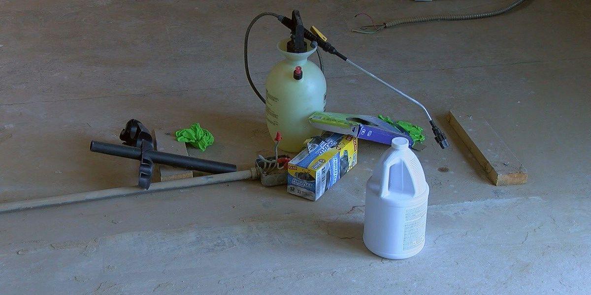 Flood victims advised to take precaution against mold