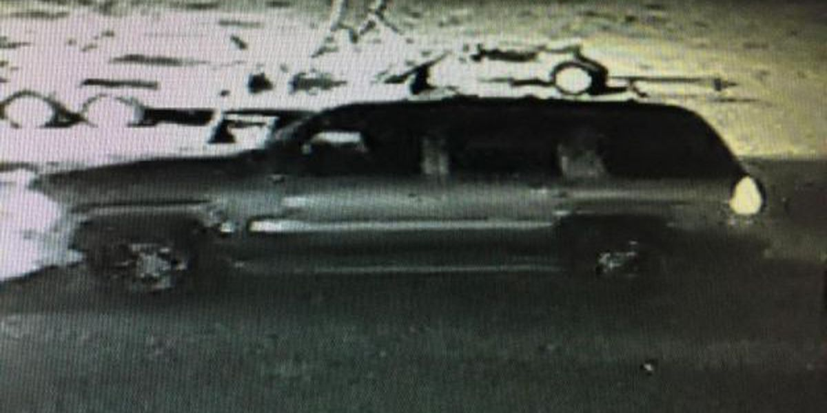 Sheriff's office searching for tractor-trailer thief