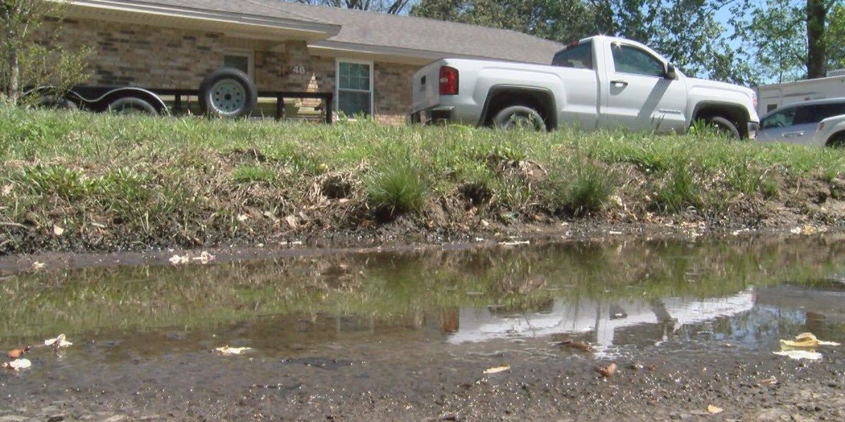 Standing water does not stand well with White County man