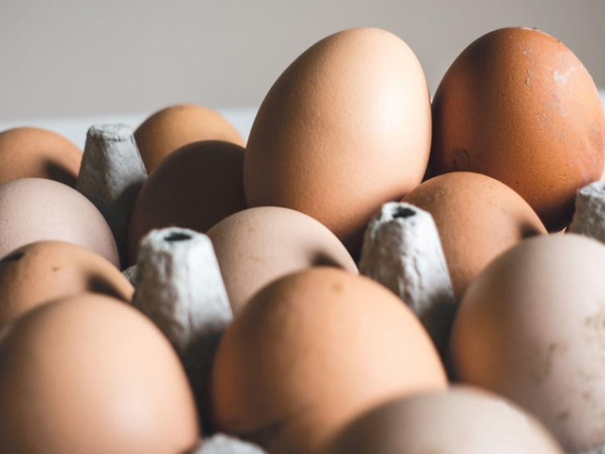 Health inspectors find not-so 'eggsellent' conditions at restaurant