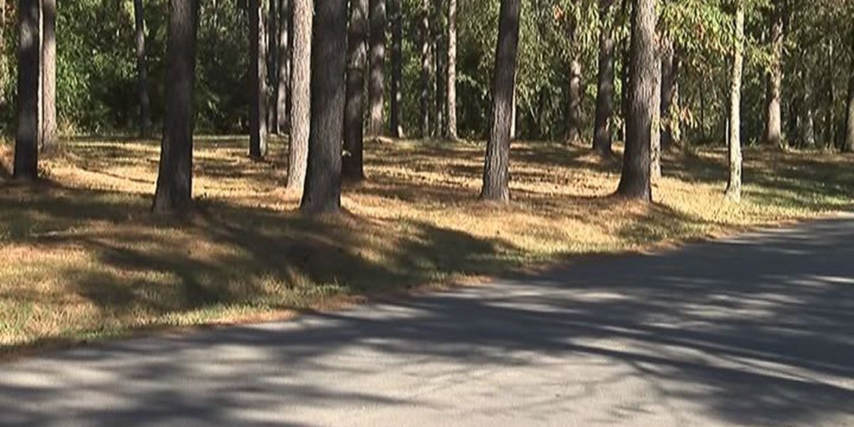 Jonesboro receives grant to fund Craighead Forest Park project