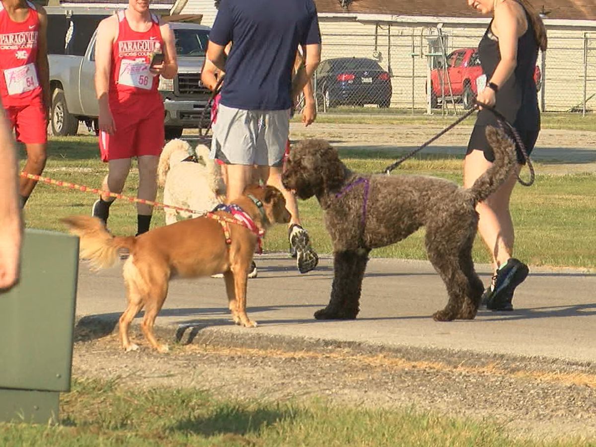 Dogs ready to run loose with annual ThumperThon race
