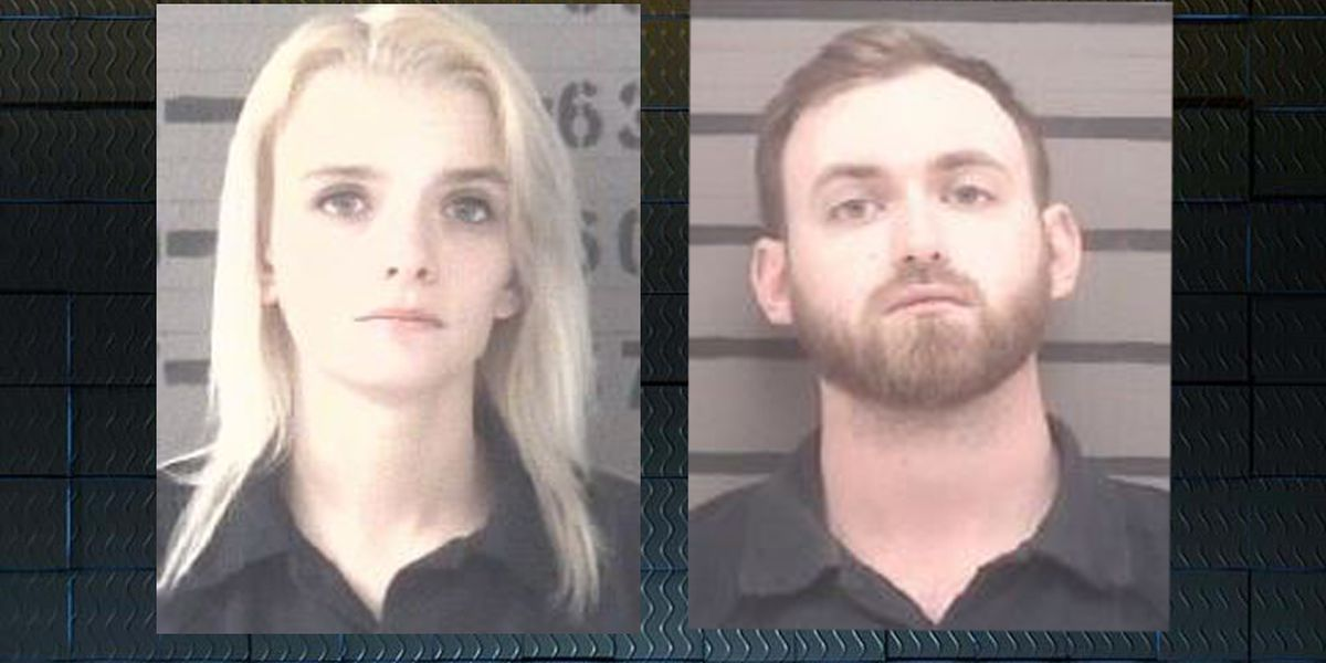 'Sliced up': GA couple arrested after dismembered cats found in apartment