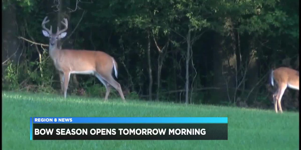 Bow deer hunting season opens this weekend