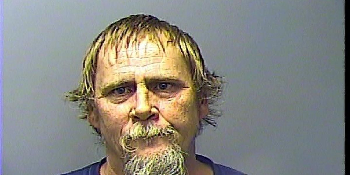 Man arrested after punching neighbor