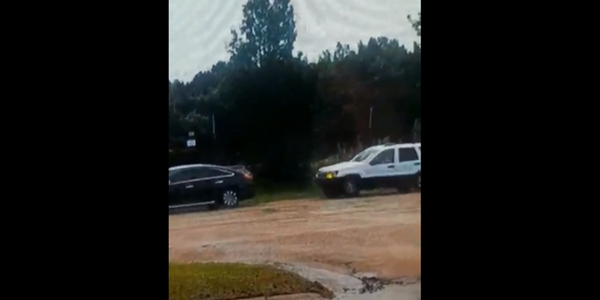 VIDEO: Man carjacked after armed suspects bump his car with SUV on State St.