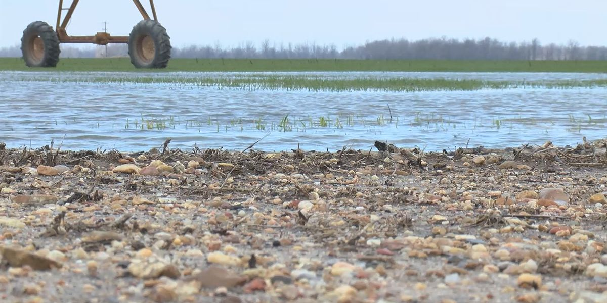 The cost of maintaining the Birds Point-New Madrid spillway