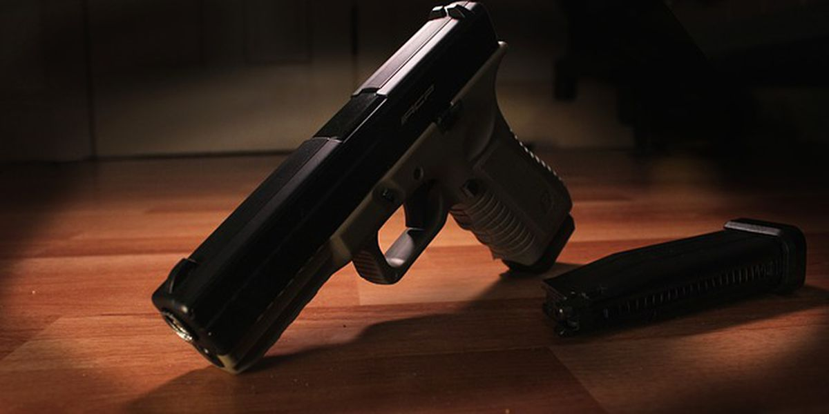 Arkansas lawmaker says self-defense bill needs further study