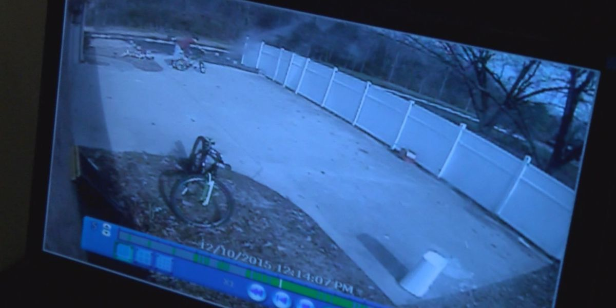 Boy's bike stolen on his birthday