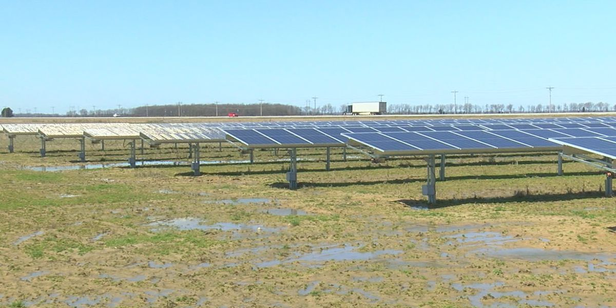 Local farmers take advantage of growing solar industry
