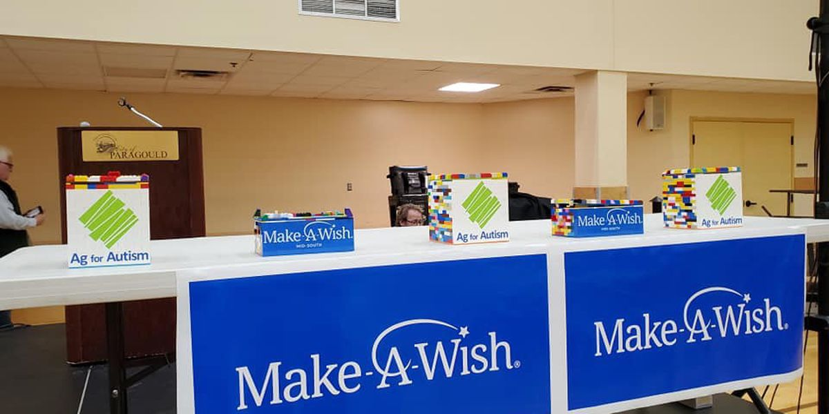 Ag for Autism & Make A Wish team up to raise money at event
