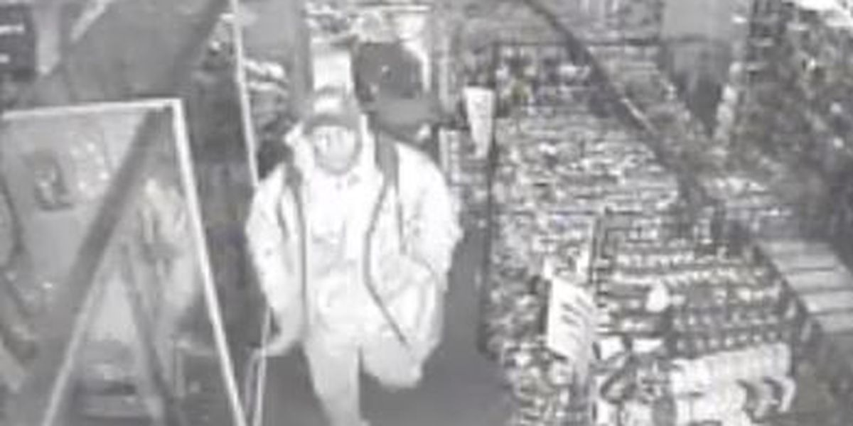 Video: police search for suspects in store break in