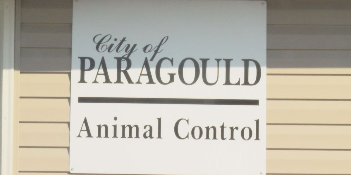 Paragould Animal Control takes on pet owners not following dog ordinance
