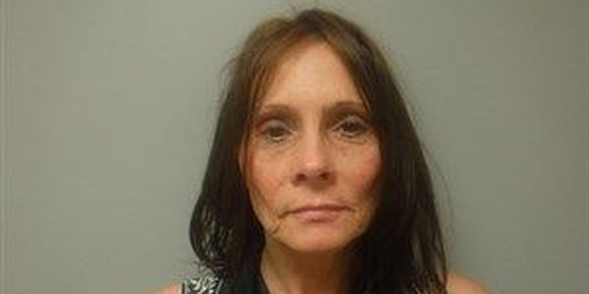 Woman accused of wrongly cashing company checks