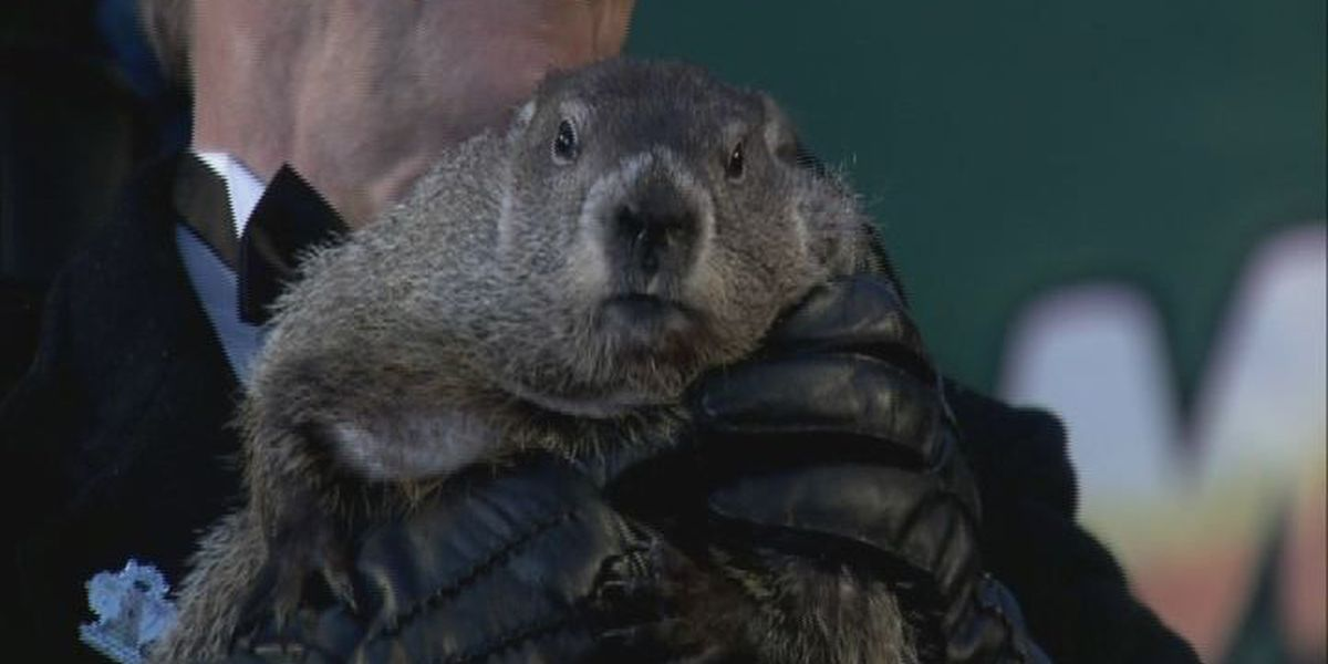 Is the groundhog's forecast right for Region 8?