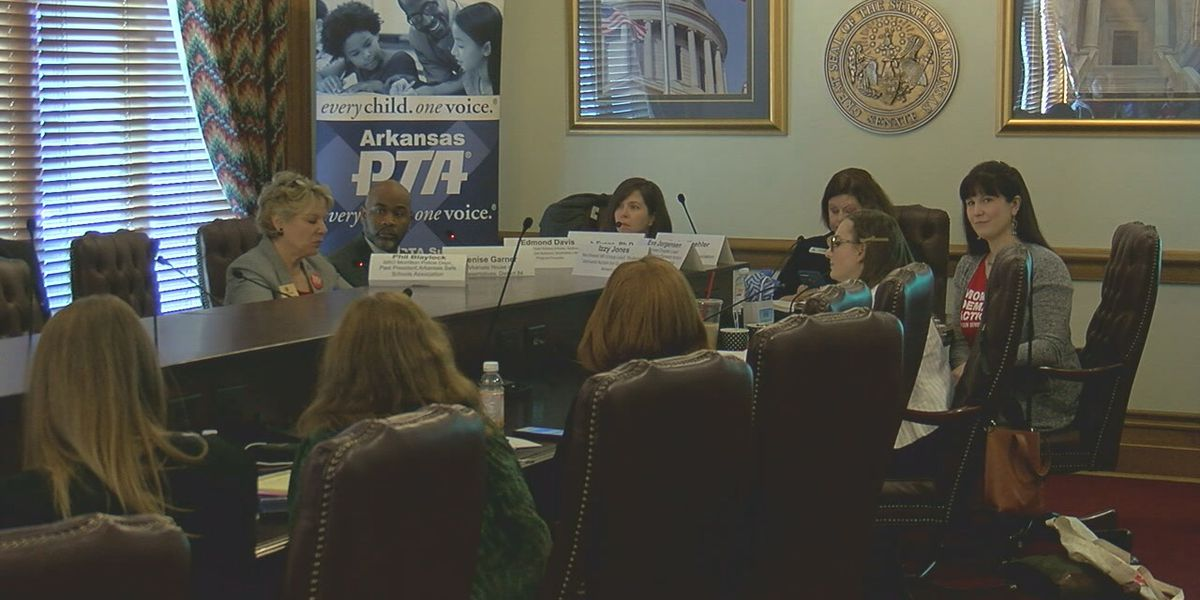 Region 8 high school student serves on panel at Arkansas State Capitol, discusses gun safety in schools