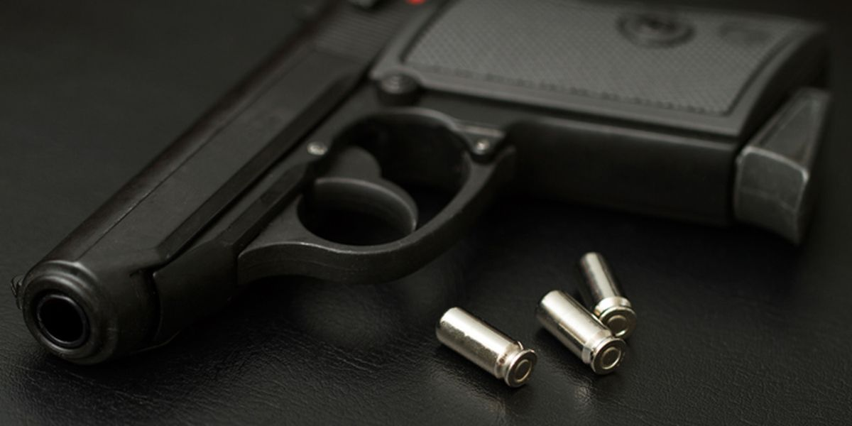 Mid-South lawmakers weigh in on gun legislation