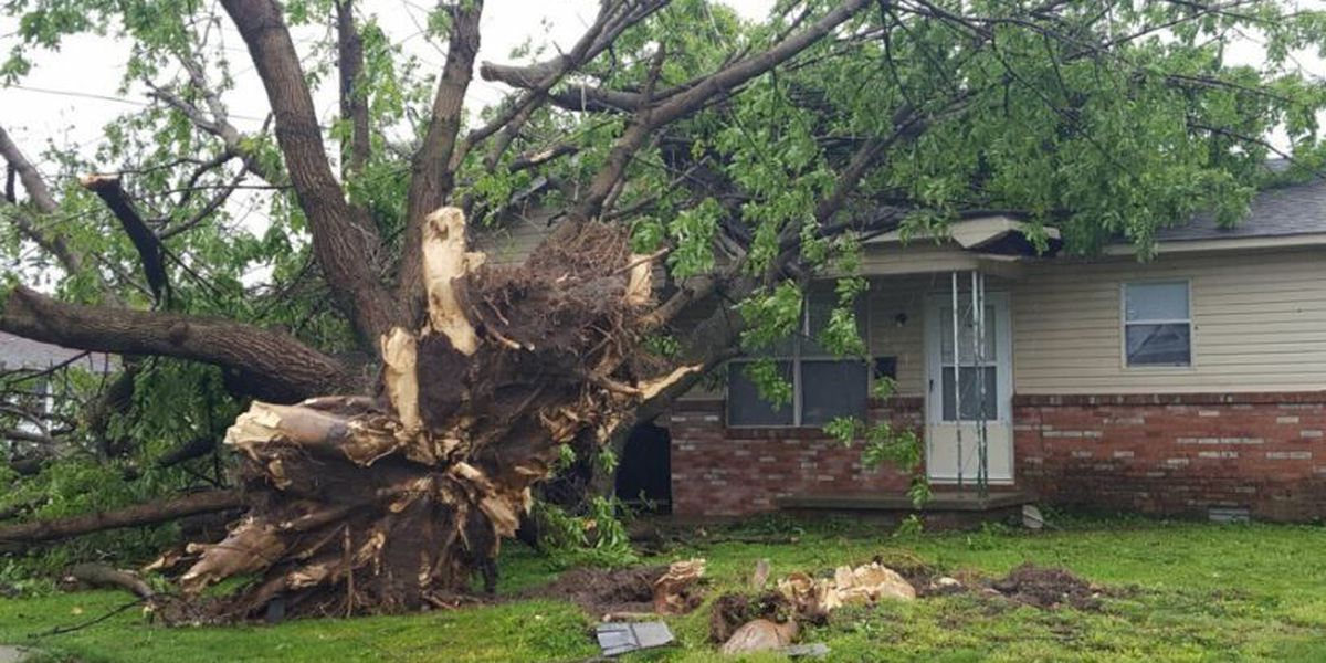 Storms leave damage in their wake in Blytheville