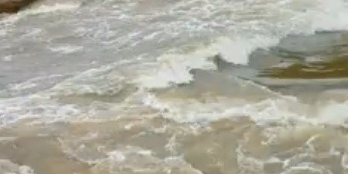 Video: Levee breach near Pocahontas