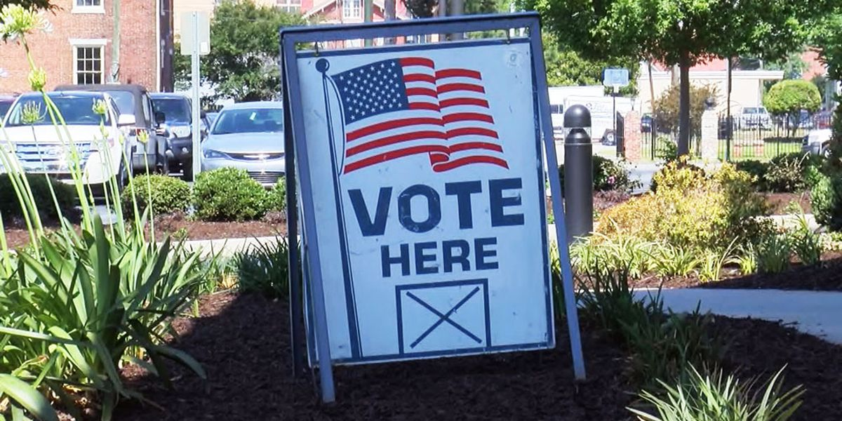 Voters cast ballots in runoff elections