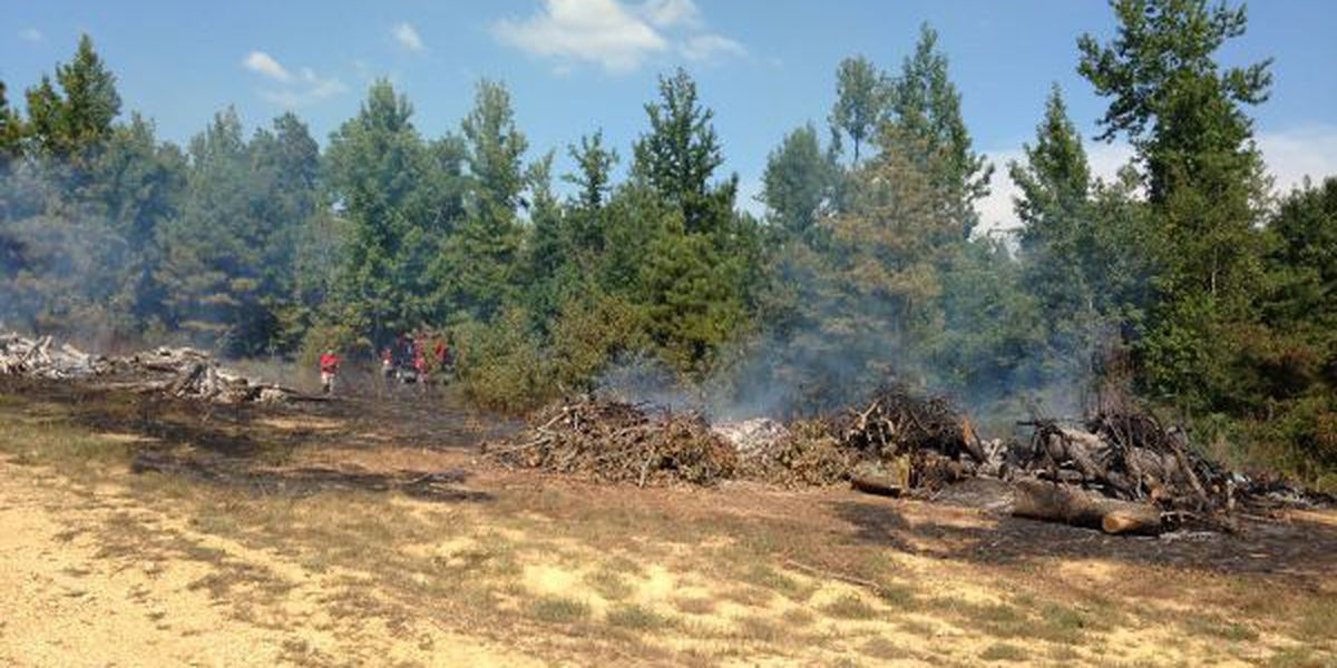 Firefighters on scene of large grass fire in Craighead County