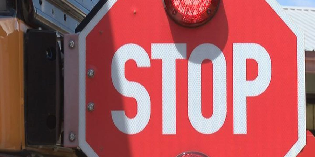 AR schools raising awareness about bus safety