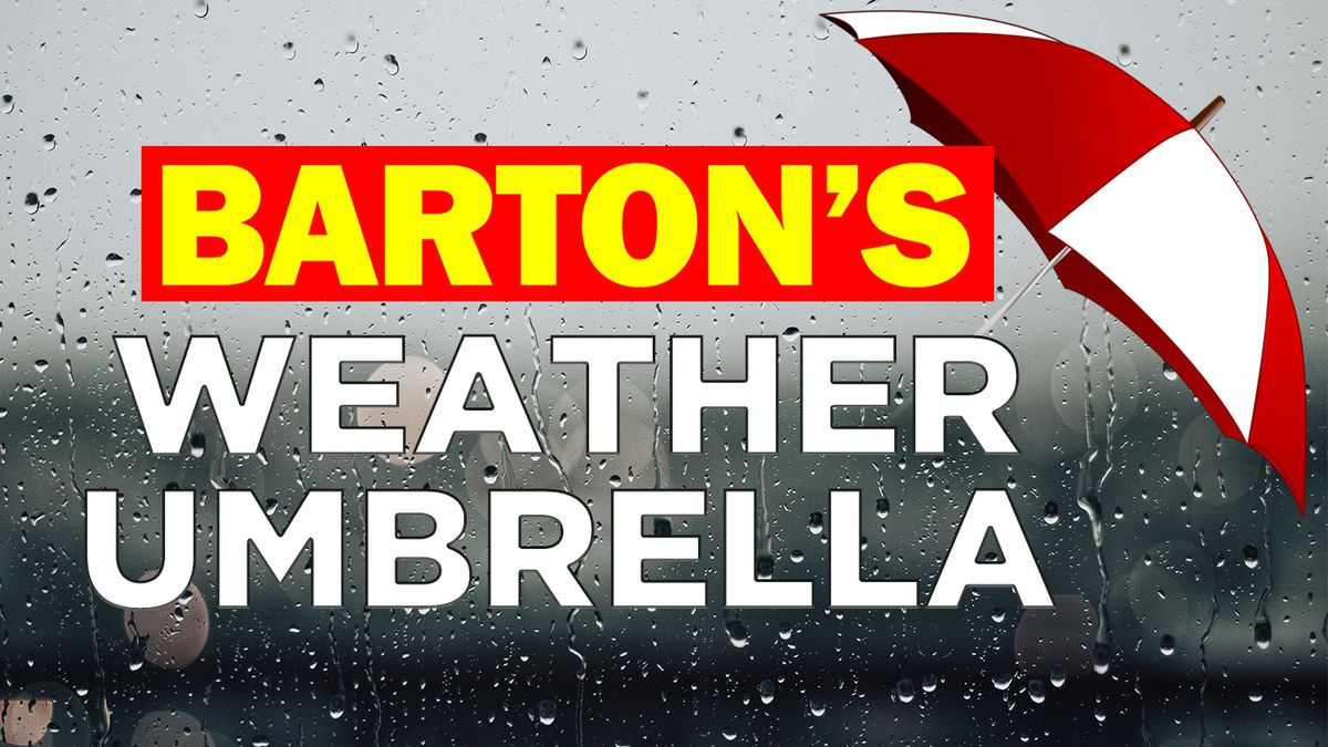 Barton's Weather Umbrella