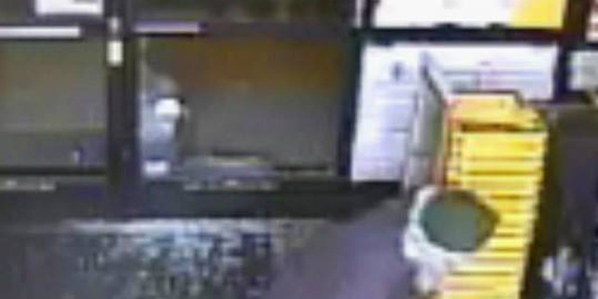 Authorities search for break-in suspect, sheriff says