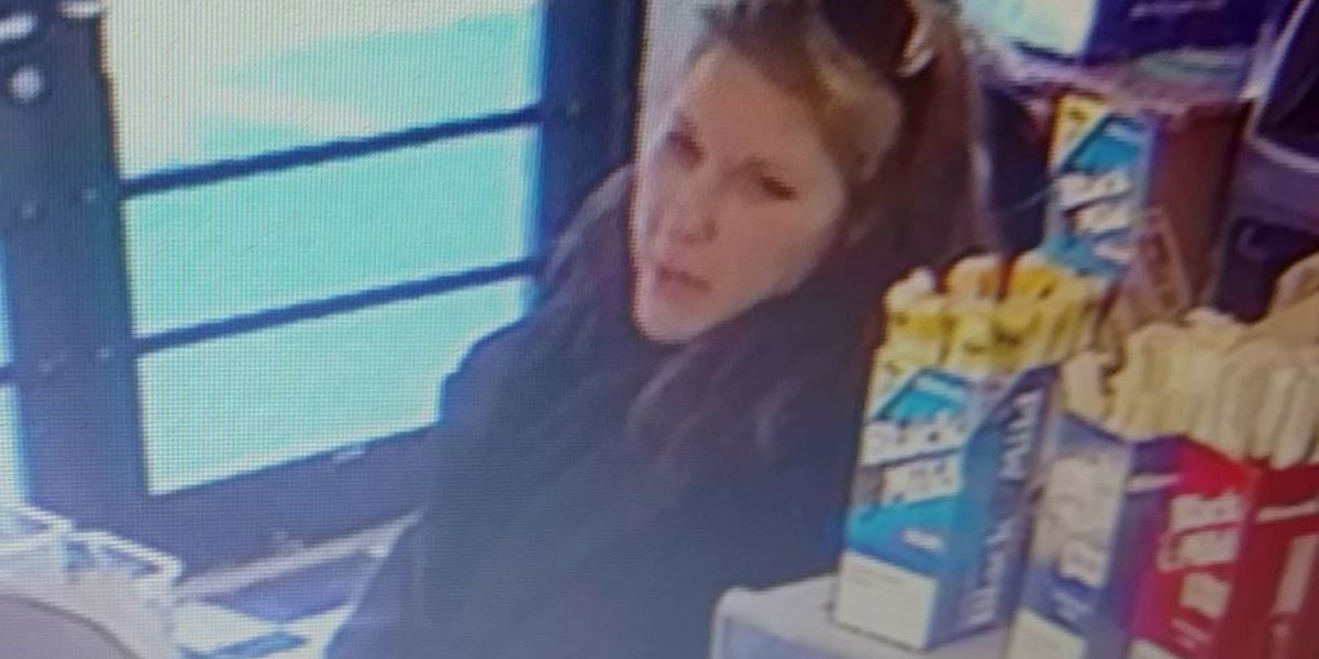Police searching for suspected credit card thief