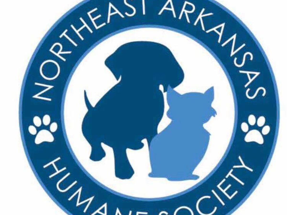 Northeast Arkansas Humane Society dog kennels full