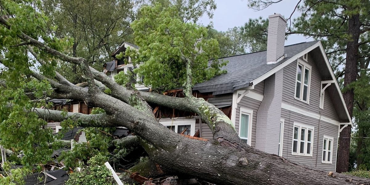Severe weather strikes Mississippi, leaves path of destruction
