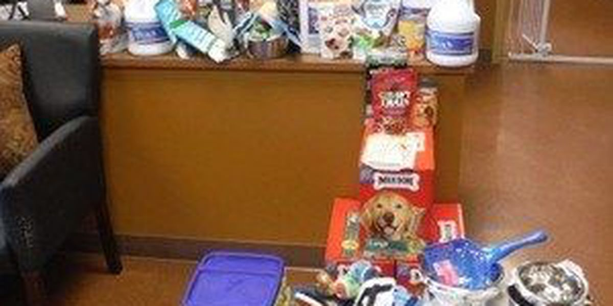 Jonesboro company makes donation to animal control