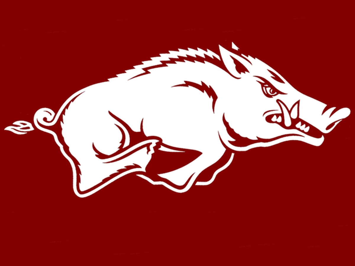 Top Seed Arkansas falls in SEC title game to South Carolina 1-0