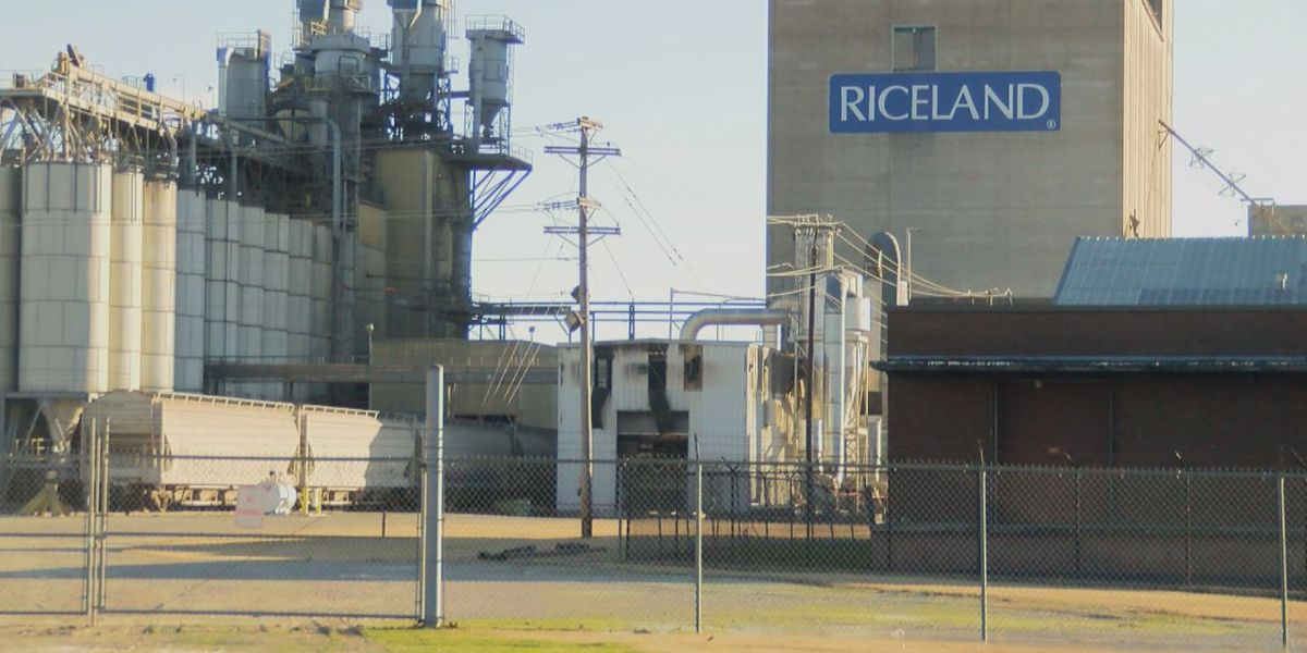 Riceland responds to employee's death