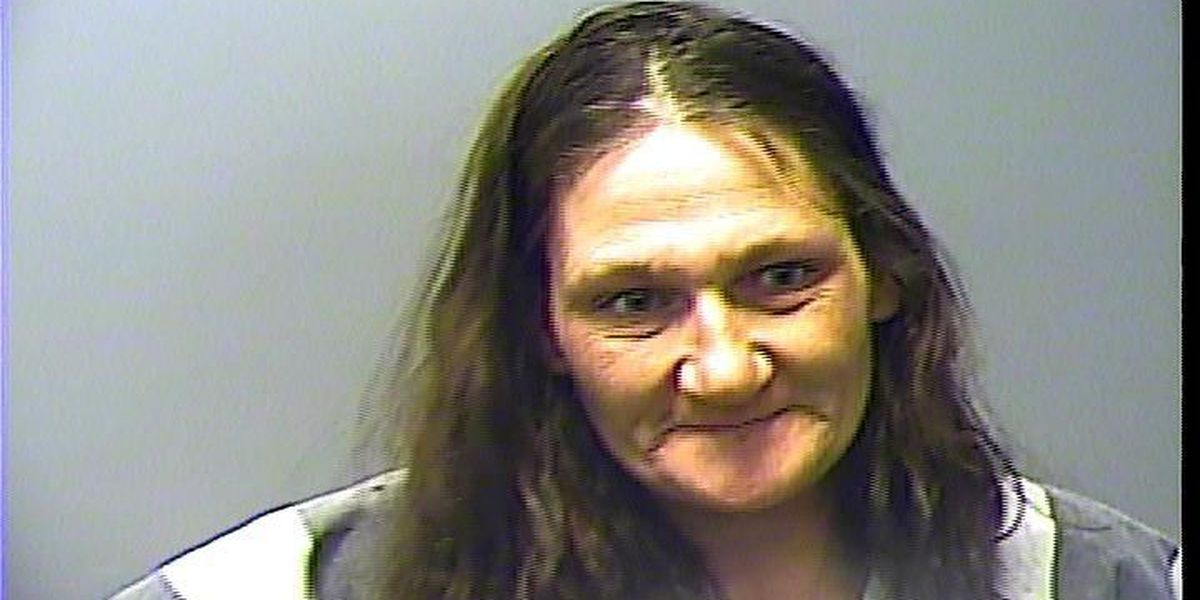 Naked woman arrested on multiple charges
