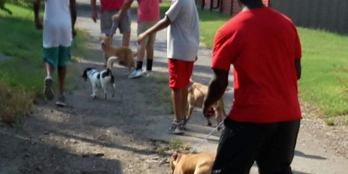 GR8 Job: Football team goes to the dogs...in a good way