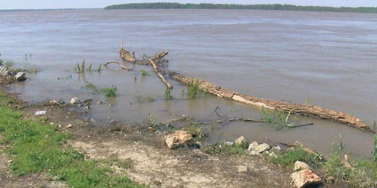 Floodwaters endanger thousands of Delta croplands
