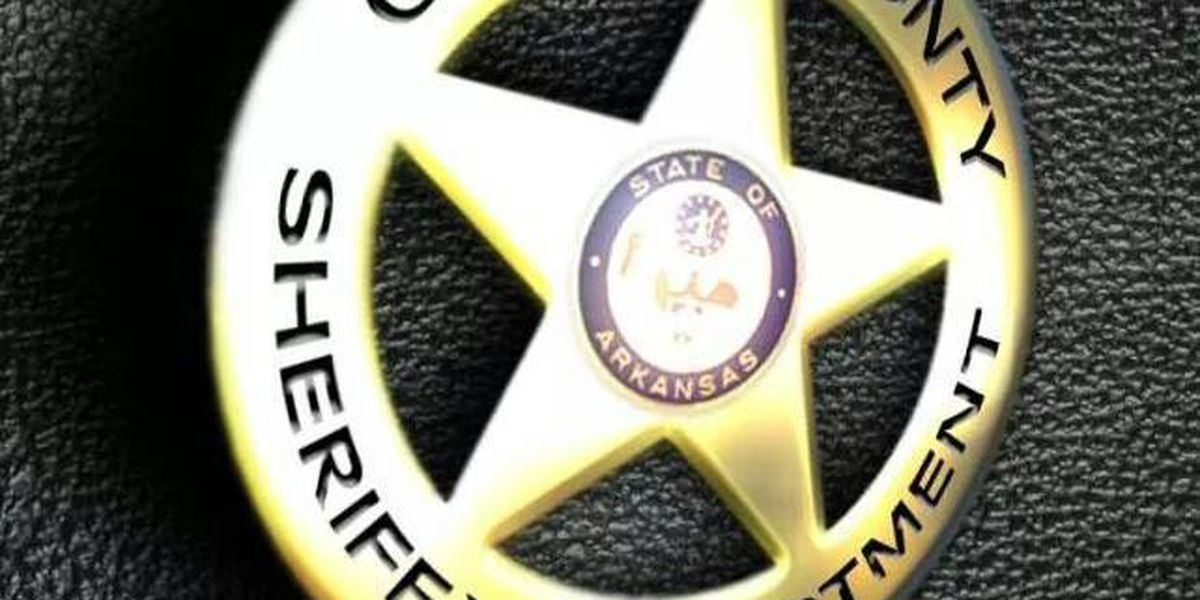 Greene Co. deputies rescue woman from submerged car