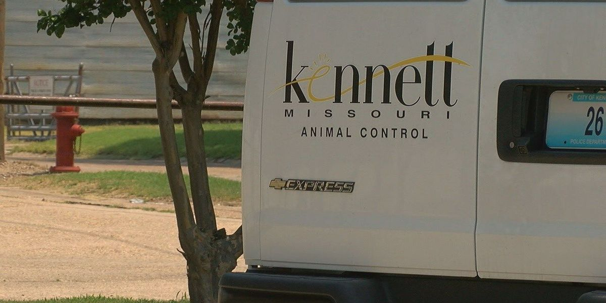 Animal control dealing with uptick in dog bites