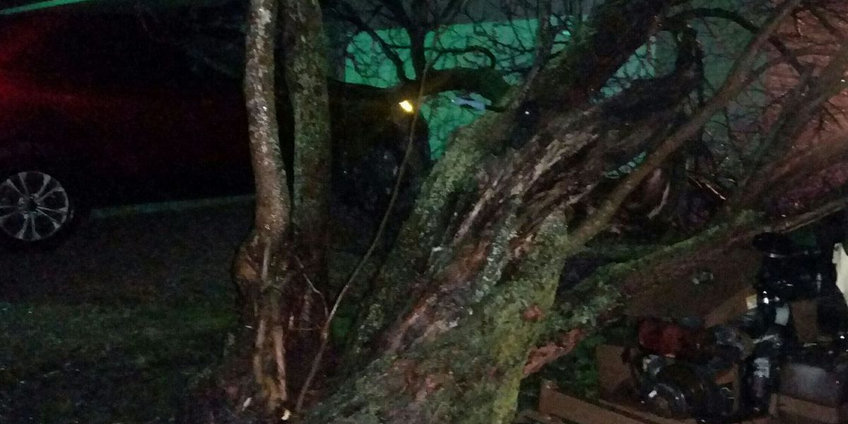 Severe storms cause damage in Northeast AR