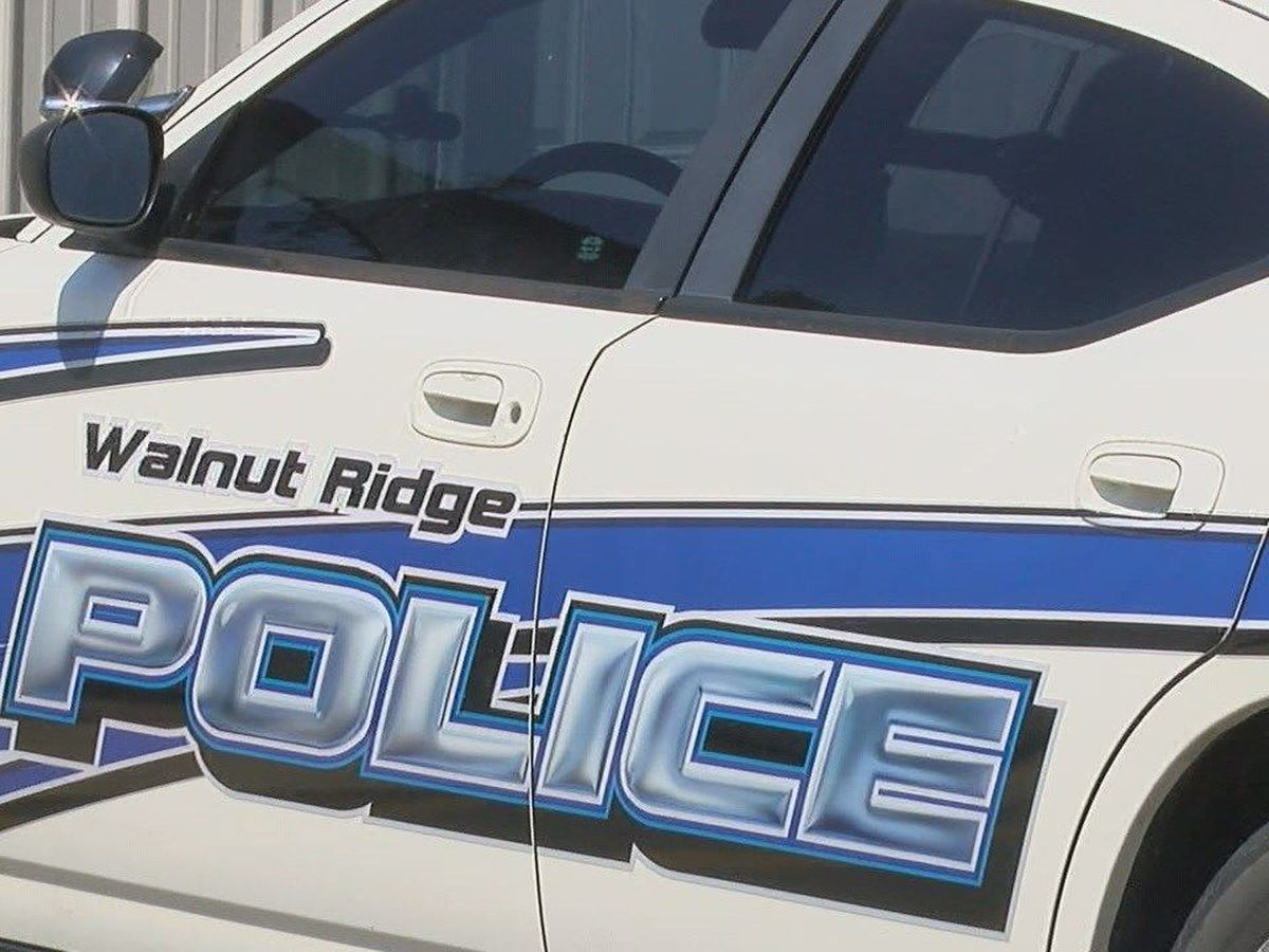 Police search for vehicle in hit and run