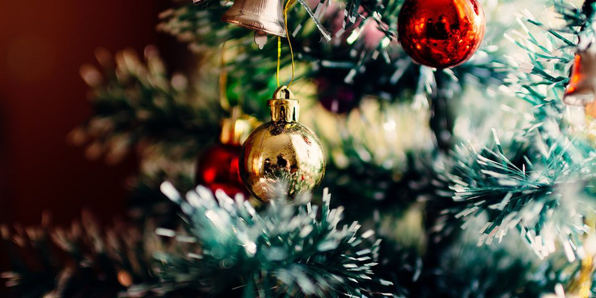 Corps to collect discarded Christmas trees