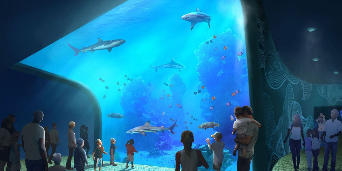 St. Louis Aquarium at Union Station set to open in late 2019