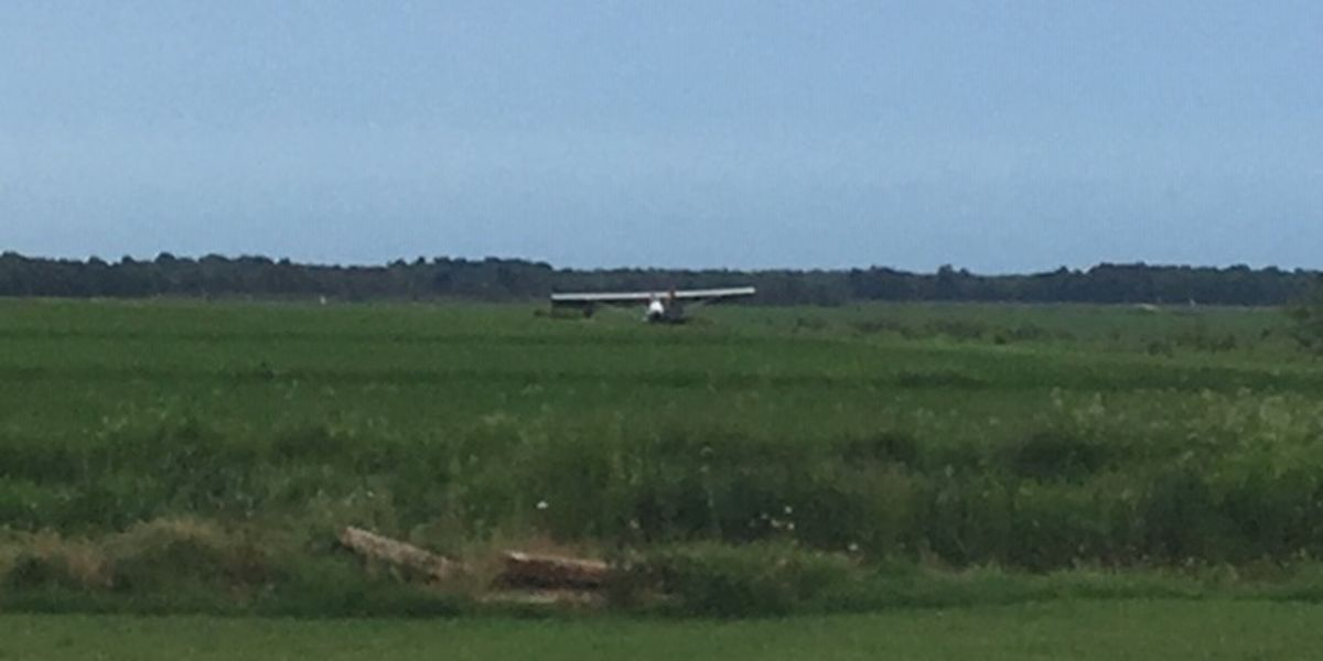 Experimental plane lands in rice field near Hwy. 67 in Butler County, Mo.; no injuries reported