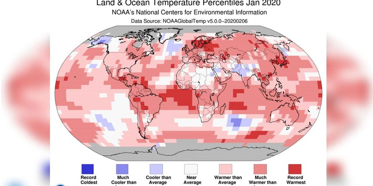 January was warmest on record