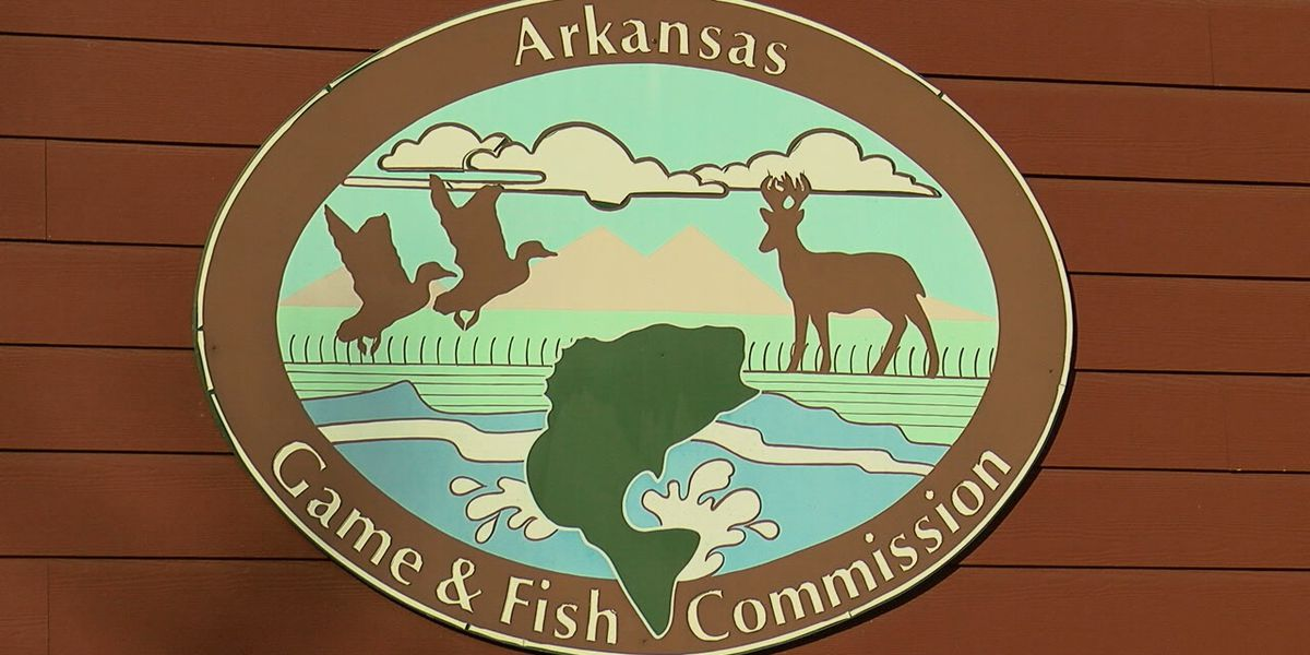 Out-of-state hunters flood Arkansas for Opening Day during pandemic