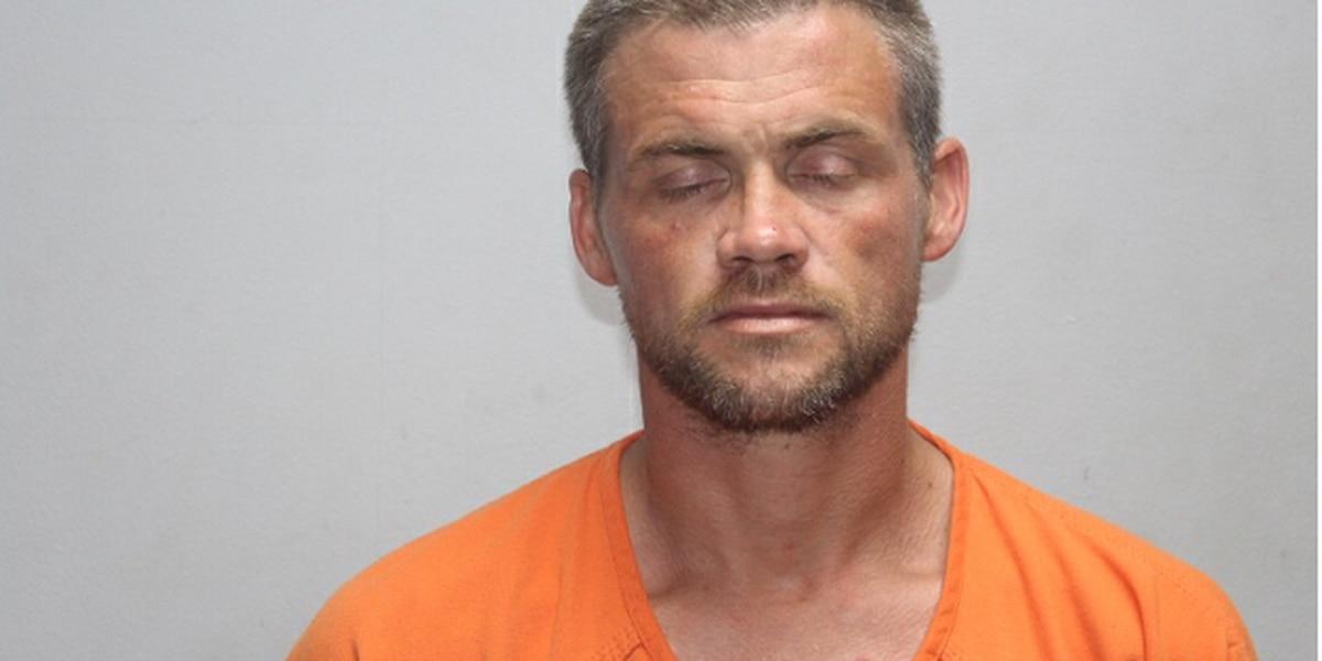 Wanted fugitive taken into custody in Stoddard Co.