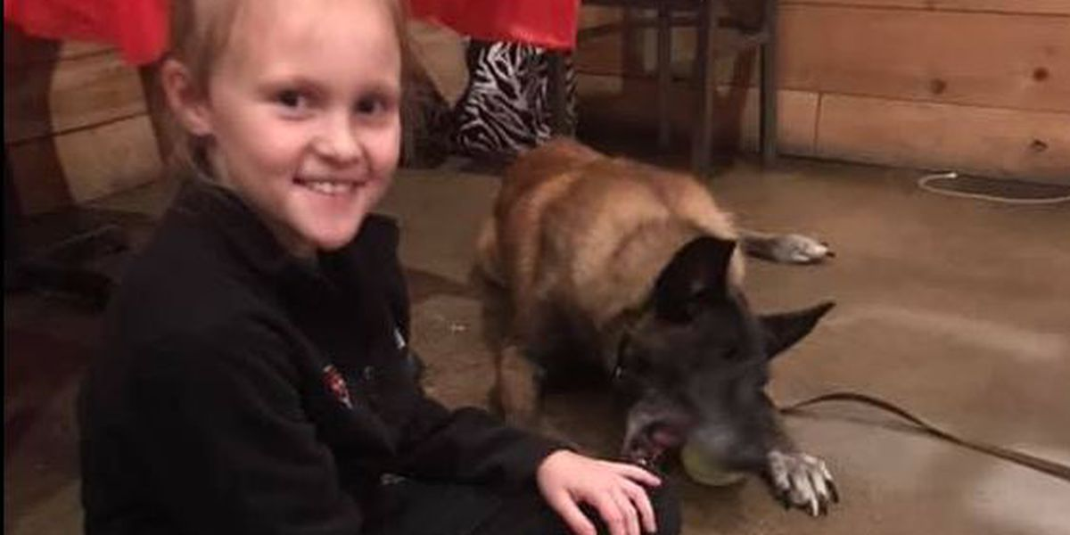GR8 Job: Girl's birthday wish benefits Bay K9 officer